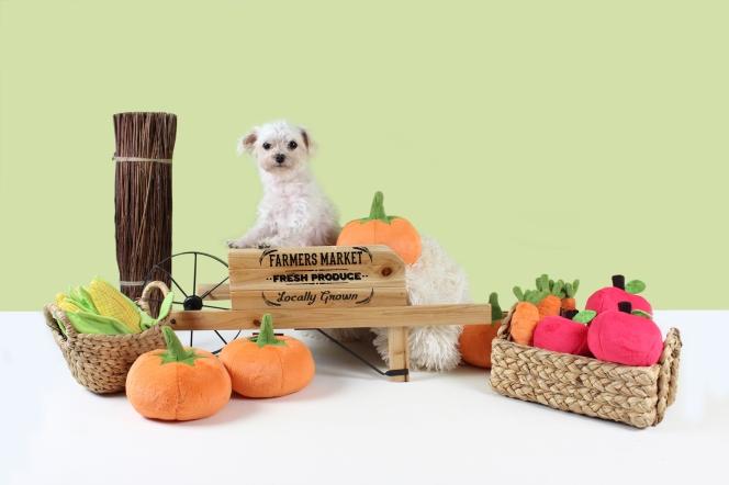 Plush Dog Toys - Carrot Dog Toy